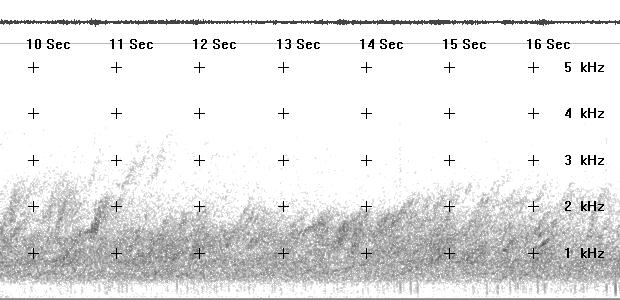 Spectrogram of strong daytime chorus taped in central Alaska 06 Sept. 1995