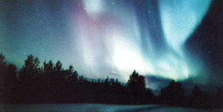 Auroral Curtains of 23 August